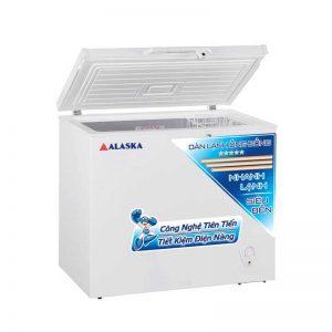 Tủ đông Alaska BD-300C thiết kế sang trọng