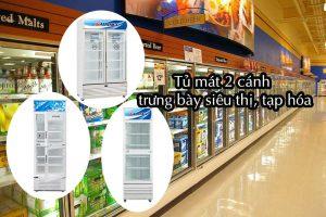 Tủ mát 2 cánh dùng cho siêu thị, cửa hàng