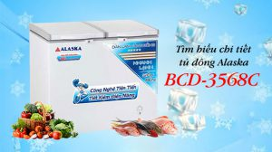 tìm hiểu chi tiết tủ đông BCD-3568C